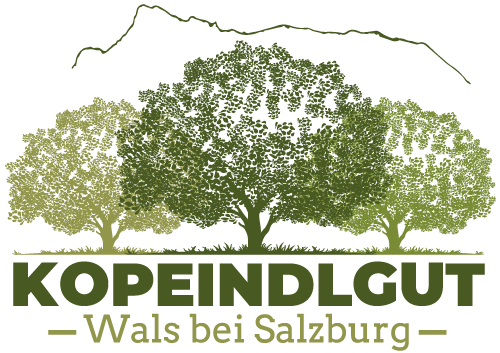 Kopeindlgut Apartments Wals b. Salzburg